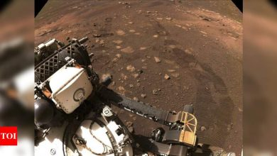 Mars rover Perseverance takes first spin on surface of red planet - Times of India