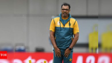 Mohammad Asif alleges Waqar Younis used to cheat with ball to get reverse swing   Cricket News - Times of India