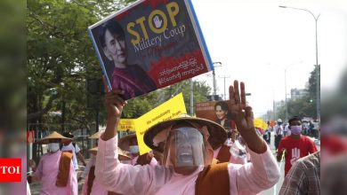 Myanmar's Aung San Suu Kyi hit with two new criminal charges - Times of India