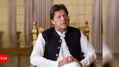 Pakistan PM Imran Khan replaces finance minister - Times of India