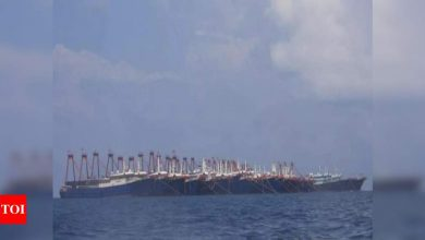 Philippines says 220 Chinese boats have encroached in South China Sea - Times of India