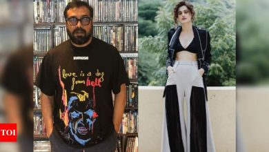 Taapsee Pannu and Anurag Kashyap's properties being raided by the Income Tax department - Times of India
