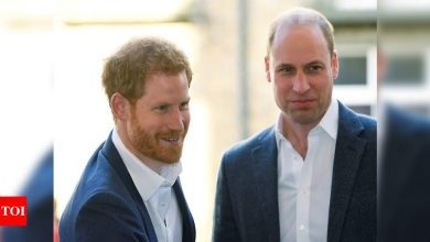 Talks between UK's Prince Harry and brother William 'not productive', friend says - Times of India