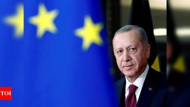 Turkey pulls out of landmark treaty protecting women from violence - Times of India