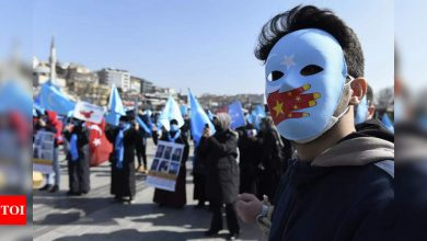 Uighur author tells of imprisonment and China attacks - Times of India