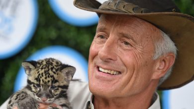 Celebrity Zookeeper Jack Hanna Diagnosed With Dementia, Retiring From Public Life