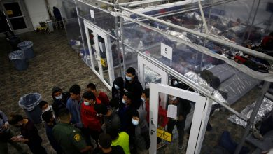 Lawyers Find the Parents of 61 More Separated Migrant Children