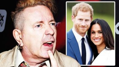 John Lydon demands Meghan and Harry work at McDonald's to 'earn their own money'
