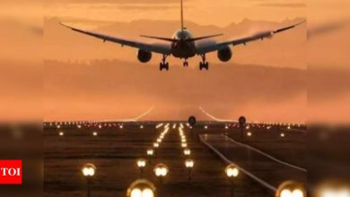 Americans advised to avoid all travels to India, Pakistan, Bangladesh, Afghanistan and Maldives - Times of India