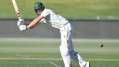 Beau Webster and Jake Doran bat away Western Australia's hopes