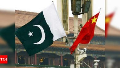 China, Pakistan to strengthen cooperation in UN, multilateral fora - Times of India
