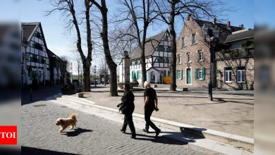 Furry friends help Germans ease pandemic blues - Times of India