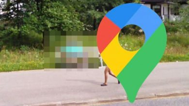 Google Maps Street View: Rare 'conjoined twin' sighting shocks viewers