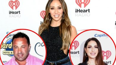 """Melissa Gorga Denies Faking Marriage Issues on RHONJ, Accuses Joe Giudice of Using Her to Make Money With """"Clickbait"""" Articles and Claims Jennifer Will Do """"Anything For Attention"""""""