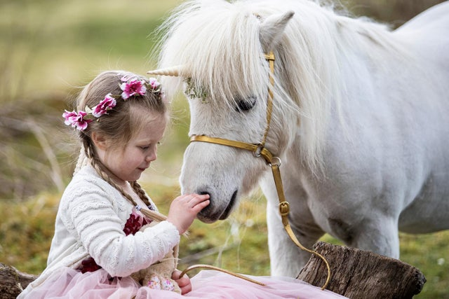 Emily Bell (4) meets Pumpkin the Unicorn ahead of his appearance at Stirling Castle for National Unicorn Day picture: Duncan McGlynn.