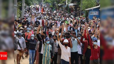 Opponents of Myanmar coup form unity government, aim for 'federal democracy' - Times of India