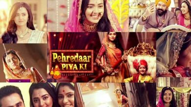 Did You Know Pehredaar Piya Ki Was Pulled Off Air 31 Episodes After Its Premiere & Even Had A Change In Its Slot Owing To The Content?
