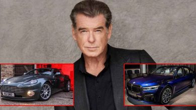 From Aston Martin To BMW 750i: Take A Look At Cars Parked At Pierce Brosnan