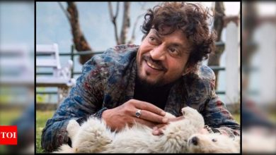 Radhika Madan, Dia Mirza, Arjun Kapoor and other celebs fondly remember Irrfan Khan on his death anniversary - Times of India
