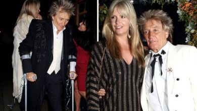 Rod Stewart spotted in ankle boot and crutches again months after surgery