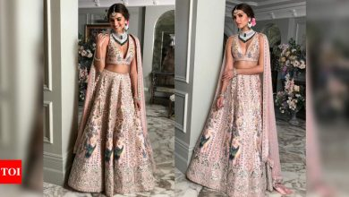 Tara Sutaria looks like a new bride in this exquisite hand-painted lehenga - Times of India