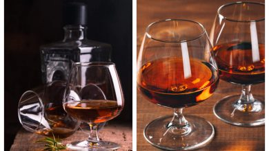 The making of Cognac: How burnt wine became a thing  | The Times of India