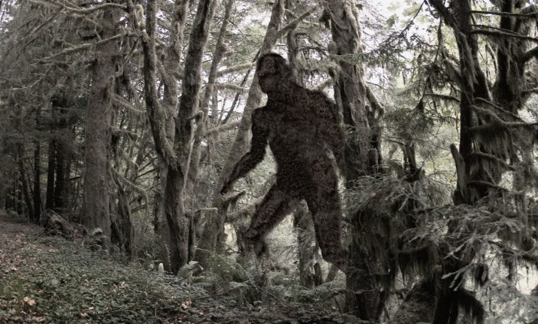 Why we're obsessed with the Bigfoot legend at the center of Hulu's 'Sasquatch'