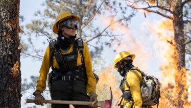 'Those Who Wish Me Dead' review: Angelina Jolie as a firefighter?