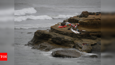 Three killed, 27 hospitalized after boat capsizes off San Diego - Times of India
