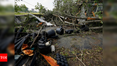 Storms spawn twisters in Mississippi, kill 2 in Georgia - Times of India