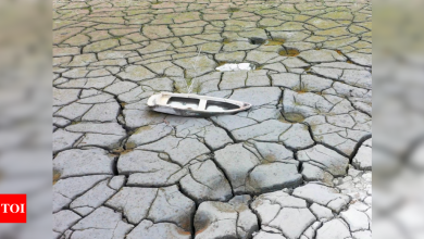 Taiwan rations water, drills extra wells amid record drought - Times of India