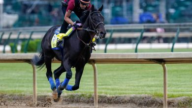 What Medina Spirit's failed drug test means for Kentucky Derby bets