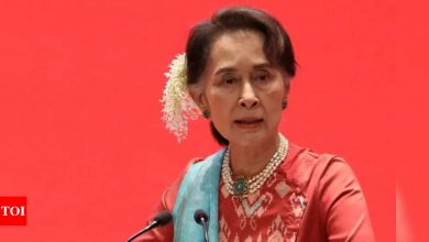Aung San Suu Kyi to appear in court May 24, lawyer says - Times of India