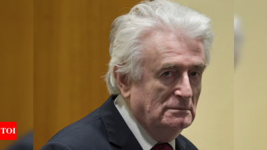 Bosnian Serb ex-leader Radovan Karadzic to spend life in UK prison - Times of India