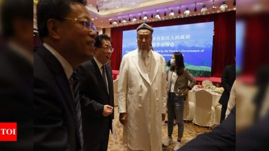 On Eid, Xinjiang imams defend China against US criticism - Times of India