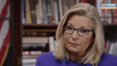 Would Liz Cheney Run to Keep Trump From Oval Office? 'Whatever It Takes,' She Says