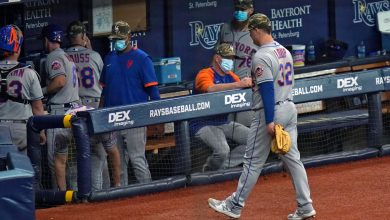 Mets lose crusher to Rays as win streak ends at seven