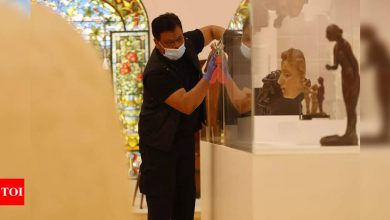 After six months, French cafes, museums and cinemas reopen - Times of India
