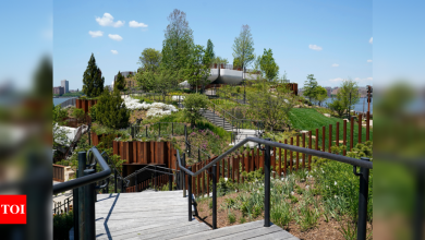 Whimsical NYC waterfront park funded by Barry Diller opens - Times of India