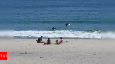 New Jersey beaches paid for by all, but parking keeps outsiders away - Times of India