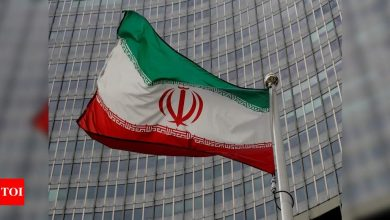 Nuclear monitoring deal between Iran, IAEA has expired, says top lawmaker - Times of India