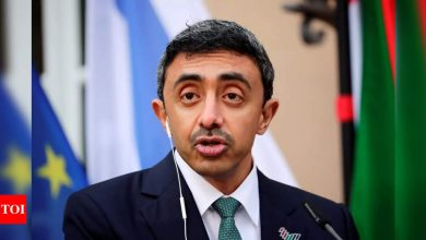 UAE says it is ready to facilitate Israel-Palestinian peace efforts - Times of India