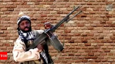 Boko Haram militants kill 8 in southeastern Niger, says defence ministry - Times of India