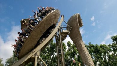 Chessington World of Adventure Sale: Get tickets, hotel stay and more with this offer