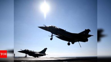 Egypt buys 30 Rafale fighter jets from France - Times of India
