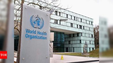 Excess deaths due to pandemic up to three times higher than reported Covid toll: WHO - Times of India