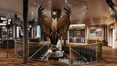 Harry Potter flagship store to open in NYC