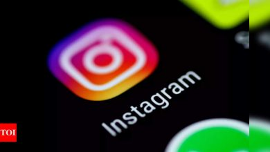 Instagram:  Instagram adds a Pronouns feature - Times of India
