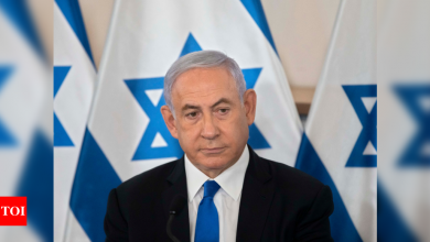 Israel's Benjamin Netanyahu 'determined' to continue Gaza operation - Times of India