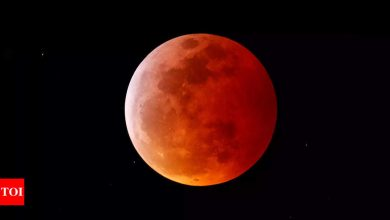 Lunar Eclipse 2021: Where you can see it in India, timings and more - Times of India